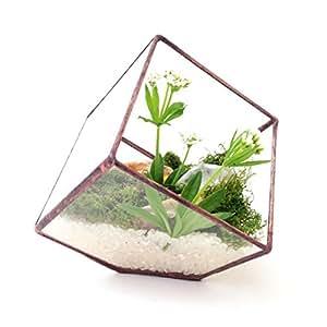 Cube petit terrarium en verre g om trique moderne fleurs for Jardinage interieur