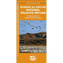 Bosque del Apache National Wildlife Refuge: A Folding Pocket Guide to Familiar Species & Plants (Pocket Naturalist Guide Series) by James Kavanagh (2010-04-16)