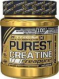 Creapure Pulver  - 100% Creatin Monohydrat Purest Creatine Xtreme Gold Series