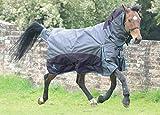 Masta Equestrian fieldmasta 100g Regendecke mit Halsteil blau/grau, blau / grau