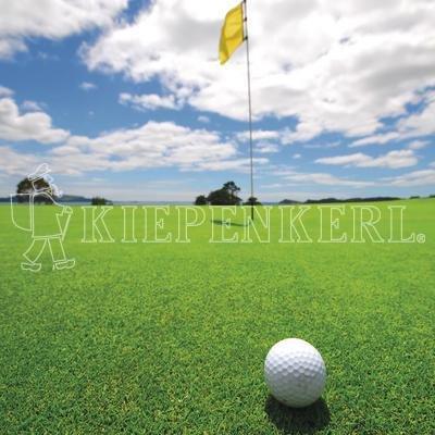 Kiepenkerl 4000159623699 RSM 4.1.1 Gazon de golf à semer pour green 10 kg