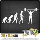 Evolution Gewichtheber 20 x 8,5 cm IN 15 FARBEN - Neon + Chrom! Sticker Aufkleber