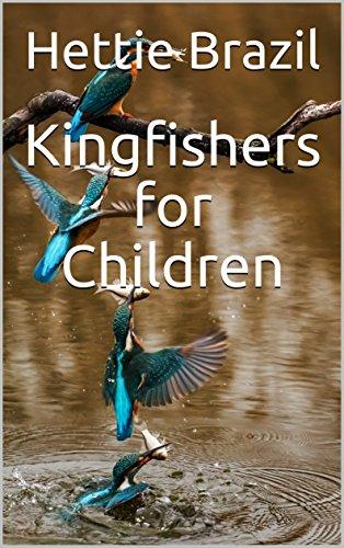 kingfishers-for-children