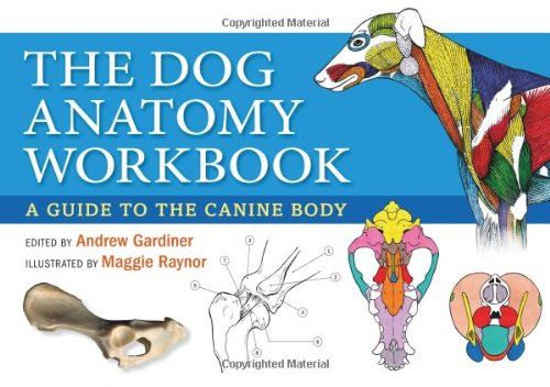 The Dog Anatomy Workbook: A Guide to the Canine Body