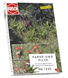 Busch 1203 - Felci e funghi