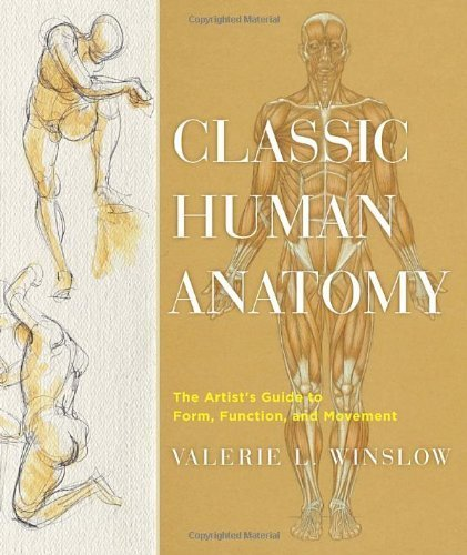 Classic Human Anatomy: The Artist's Guide to Form, Function, and Movement by Winslow, Valerie L. (2008) Hardcover