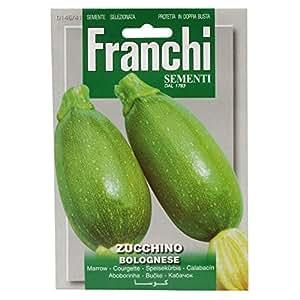 Franchi Samen Zucchini Bolognese