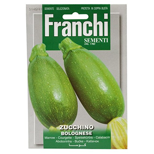 Seeds of Italy Ltd Franchi Courgette Bolognese
