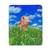 funnyy - Manta para sofá o Cama, diseño de Flores, cálida, Suave, tamaño Grande, para niños, Unisex y Mujeres