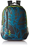 #4: Skybags Footloose Colt 30 Ltrs Grey Casual Backpack (BPFCOE1EGRY)