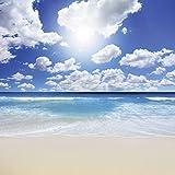 Pegatinas pared de tela no tejida o vinilo de pantalla KWEST Magníficas playa paisaje en diferentes tamaños y colores disponible, vinilo, azul, 100x100 cm / Vinyl