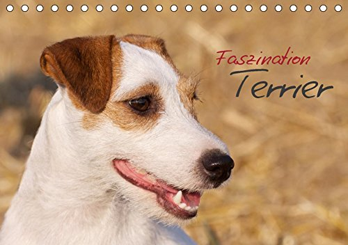 Faszination Terrier (Tischkalender 2019 DIN A5 quer): Terrier in beeindruckenden Bildern (Monatskalender, 14 Seiten ) (CALVENDO Tiere)