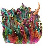 ERGEOB® Echte Hahnenfedern auf 200cm Stoffstreifen in Bunt - 13 Farbvarianten - Ideal für Fasching, Karneval, Halloween, Basteln, Bekleidung, Kostüme.