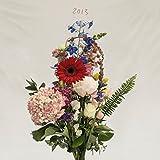 Songtexte von Meilyr Jones - 2013