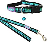 D&C Blue Tartan Collar and Lead Set, Choose Size, (Medium Collar & Lead)