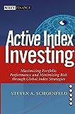Active Index Investing: Maximizing Portfolio Performance and Minimizing Risk Through Global Index Strategies (Wiley Finance)