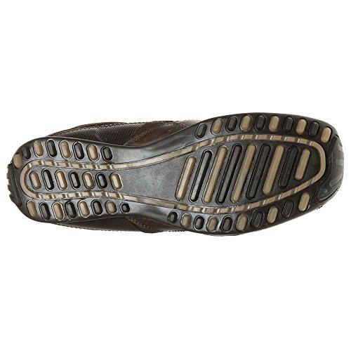 Red Tape , Chaussures de ville à lacets pour homme Marron marron Marron