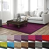 Shaggy Teppich Barcelona | weicher Hochflor Teppich für Wohnzimmer, Schlafzimmer, Kinderzimmer | GUT-Siegel + Blauer Engel | Verschiedene Farben & Größen | 66x130 cm | Berry