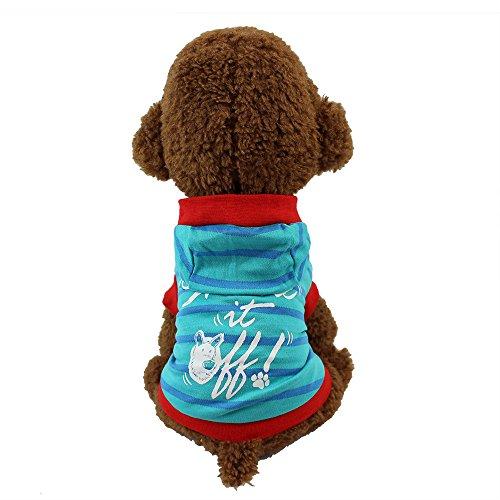 Haustier Katze Hund Pullover,Kapuzenpullover Warme T-Shirt Kleidung im Herbst und Winter,für Kleine Hunde,Welpen,Schnauzer, Teddy,Pudel,Chihuahua (Blau, XS) -