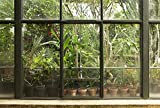 Scenolia Papier Peint Intissé Jardin et Patio Tropical 4 x 2,70m - Décoration Murale Effet Trompe l'Oeil - Revêtement Panoramique Tapisserie XXL - Pose Facile et Qualité HD