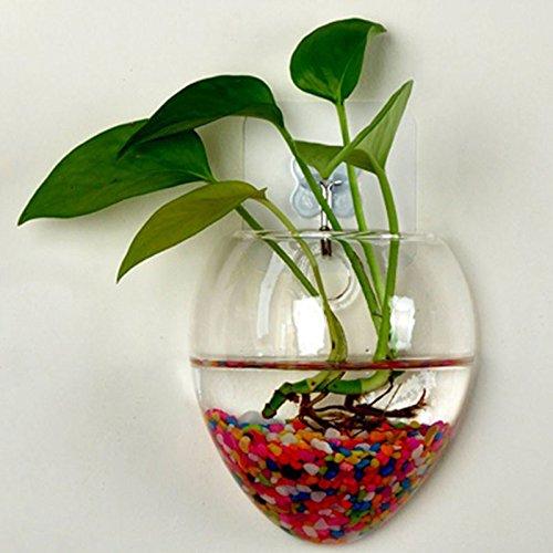 Rosepoem Wandbehang Pflanzen Pflanzer Terrarien kreative Mode Glasvase Home Decor Wall Pflanzen nicht weißen kleinen Nagel (Kleine Glasschalen Weiße)