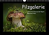 Pilzgalerie - Heimische Pilze aus der Region Rheinland-Pfalz (Wandkalender 2018 DIN A4 quer): 13 beeindruckende Pilzaufnahmen