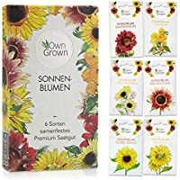 Sonnenblumen Samen Set: Premium Sonnenblumen Saatgut mit 6 Sorten schöner Sommerblumen Samen - Garten Geschenk Anzuchtset - Blumen für Bienen - Blumensamen Sonnenblumen - Saatgut Blumen von OwnGrown