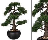Künstlicher Bonsai Zeder mit 48cm im schwarzen Keramiktopf - künstliche Bonsai Pflanzen Kunstpflanzen Dekopflanzen asiatische Dekoration Thai Deko China Dekorationen