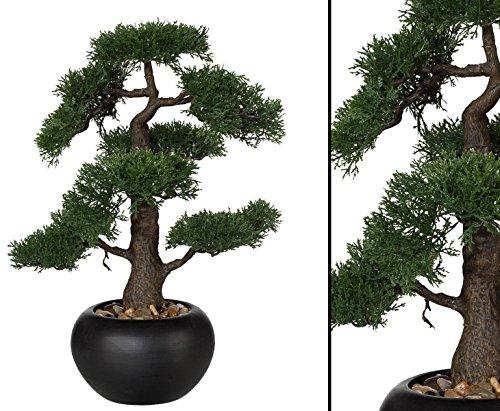 """Künstlicher Bonsai \""""Zeder\"""" mit 48cm im schwarzen Keramiktopf - künstliche Bonsai Pflanzen Kunstpflanzen Dekopflanzen asiatische Dekoration Thai Deko China Dekorationen </p> --> großes Kunstpflanzen Sortiment"""