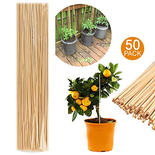 50 Baguettes de bambou en bois de 40 cm de jardin Cannes plantes support Fleur bâton Canne – Support pour plantes bâton en bambou – Jardin de croissance en bois support
