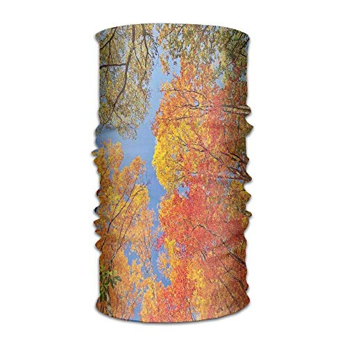 HLKPE Woman's Man Turban Falls Colors National Country Park Nature Observation Base Perspective Campus Headpiece -