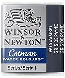 Winsor & Newton 0301465 Cotman Aqarellfarbe - 1/2 NAPF, Gute Transparenz, hervorragender Tönungsstärke und Gute Maleigenschaften, Paynes Grau