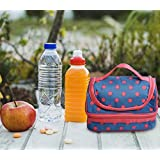 Livzing Thermal Insulated Aluminium Foil Double Layer Lunch Bag Waterproof Portable Heat Cooler Ecofriendly Reusable Bags