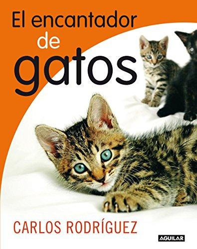 Descargar It Por Utorrent El encantador de gatos Falco Epub