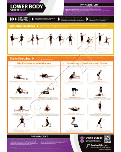 Lower Body Stretching – Fitness Planners