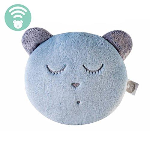 Whisbear Bär, Ein-