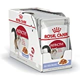 ROYAL CANIN Comida para Gatos Instinctive In Jelly 12 * 85gr