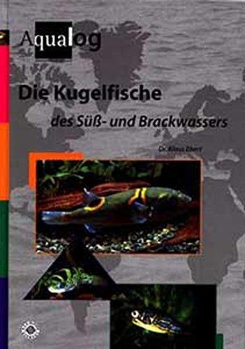 Die Kugelfische des Süss- und Brackwassers