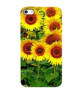 EPICCASE the sunflower Mobile Back Case Cover For Apple iPhone 4/4s (Designer Case)