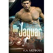 Mr. Jaguar (contemporary M/M cinderfella romance) (English Edition)