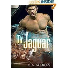Mr. Jaguar (contemporary M/M cinderfella romance)