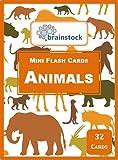 #10: Animals Mini Flash Cards - Brainstock Flash Cards