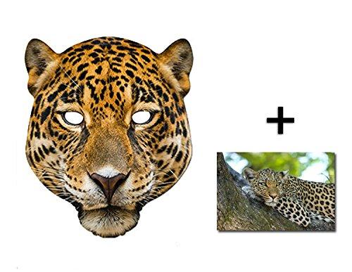 Leopard Tier Single Karte Partei Gesichtsmasken (Maske) Enthält 6X4 (15X10Cm) (Leopard Gesicht Kostüm)