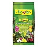 Flower 1-60023 - Quelato de Hierro, 1 Kg