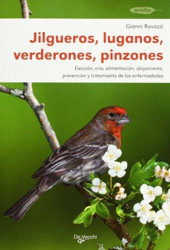 Jilgueros, luganos, verderones y pinzones (Animales) por Gianni Ravazzi