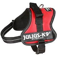 Julius-K9 Mini-Mini, 40-53 cm, Rojo