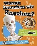 Warum brauchen wir Knochen?: Warum schlafen wir? Alles was Du schon immer über Dinosaurier wissen wolltest! Mit Sticker und Riesenposter 50