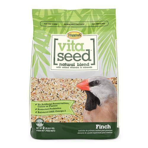 VITA SEED FINCH (Seed Finch Vita)