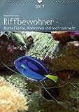 Riffbewohner - Bunte Fische, Anemonen und noch viel mehrAT-Version (Wandkalender 2017 DIN A3 hoch): Tropische Riffe bieten eine große Vielfalt an ... Farben (Planer, 14 Seiten ) (CALVENDO Tiere)