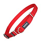 Red Dingo Martingale Hundehalsband, einfarbig